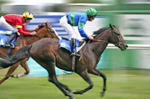 Horse Racing-hdhut_blogspot_com (22)