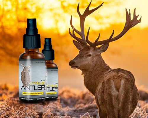 Xtreme Antler Review Deer Antler Spray Benefits