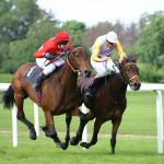 Horse-racing-4-150x150