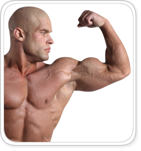 Pro Testosterone Reviews