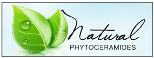 np-logo