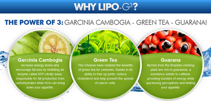 lipog3 garcinia cambogia reviews
