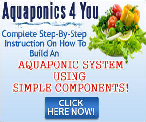 Aquaponics 4 you reviews
