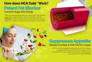 HCA Cuts Garcinia Cambogia Review