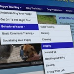 Puppy-Training-150x150