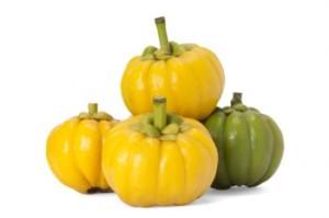 The-Garcinia-Cambogia-Fruit-e1412769835668