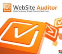 Website-Auditor1