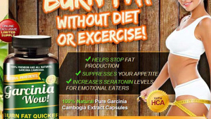 Garcinia Wow Reviews