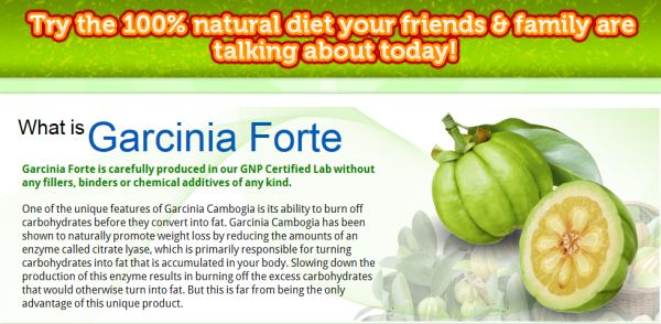 Garcinia_Forte_Fat_Burner_Reviews-1