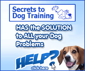 Secrets to Dog Training Reviews