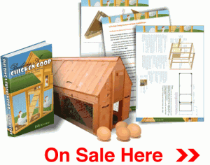 Building A Chicken Coop Reviews