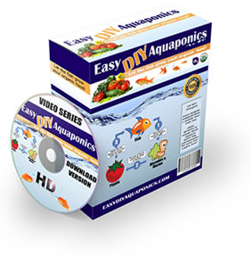 Easy DIY Aquaponics Review