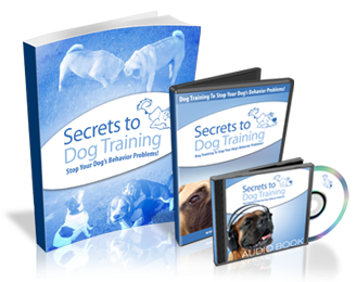 secrets-to-dog-training