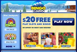 Bingo Cabin Review