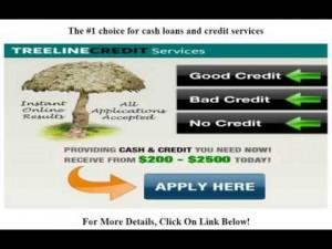 Treeline Credit Services Pros: