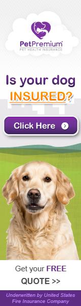 Pet Premium Cons