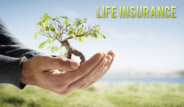 Best Quotes Life Insurance