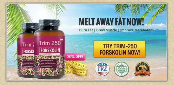 Does Trim Forskolin Work?