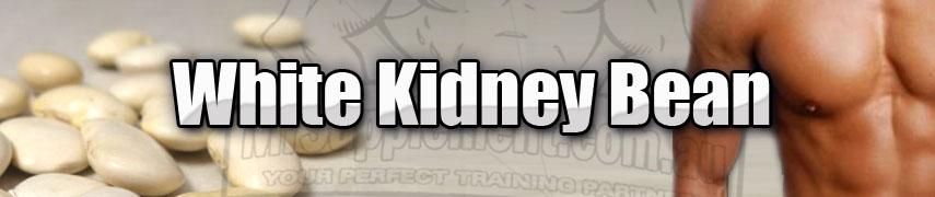 White Kidney Bean Extract Ingredients