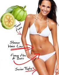 What is Perfect Garcinia?