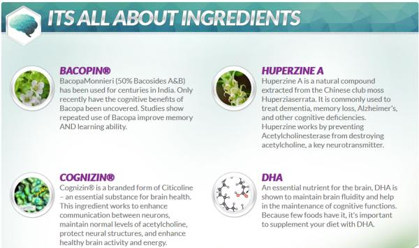 NEURO ELITE INGREDIENTS