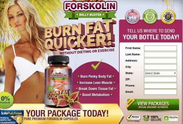 DOES FORSKOLIN BELLY BUSTER WORK?