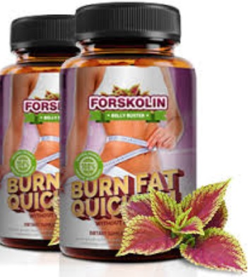 FORSKOLIN BELLY BUSTER INGREDIENTS