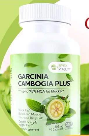 Garcinia cambogia plus ingredients