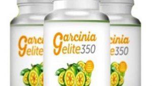 Garcinia Elite 350 Cons